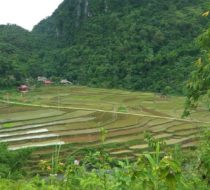 Mai Chau and Pu Luong expedition trek 5 day tour