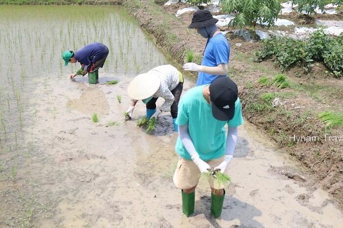 Nam Dinh farm tour