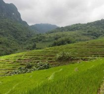 Off the beaten track in Mai Chau and Pu Luong nature reserve– 4 day tour