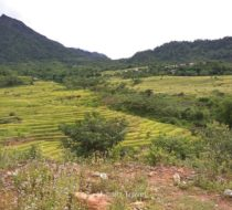 Easy trek of Pu Luong 3 day to see its highlights