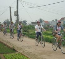Hoian Countryside day tour : Explore Hoian's rural villages by bike