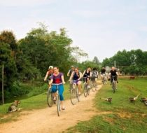 Rural Ninh Binh Experience and Bike tour