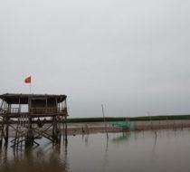 Northern Vietnam Countryside Adventure