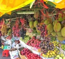 Ben Tre one day tour : Explore Coconut Kingdom