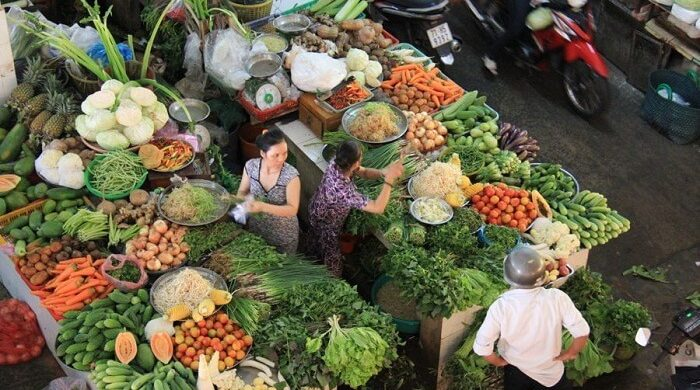 Private Mekong Delta Homestay tour 2 days