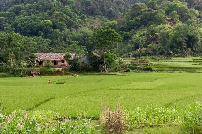Ninh Binh Pu Luong trekking