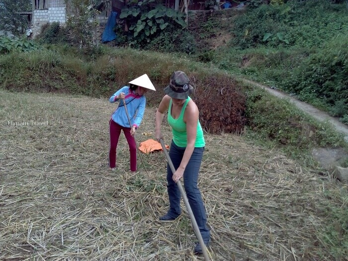 Help with sweeping rice in Sapa