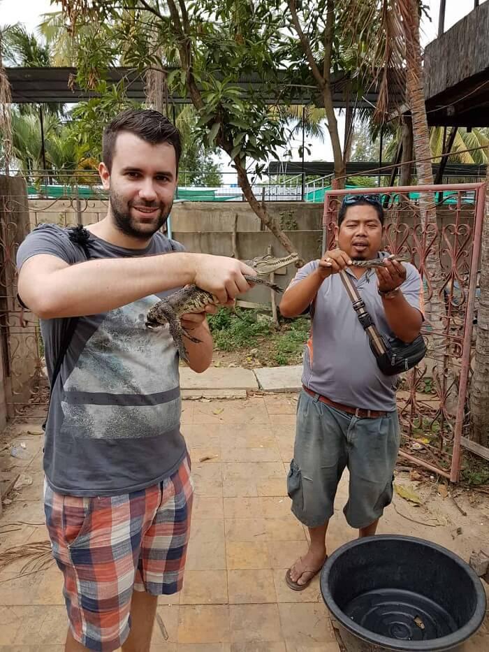 Battambang Crocodiles farm