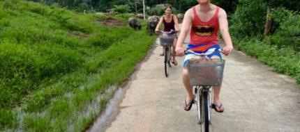 Rural Ninh Binh Experience day trip : Farming, Fishing, cooking and Bike tour