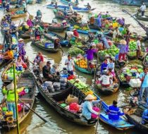 Ultimate Mekong delta day trip from Sai Gon