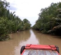 Non Touristy Mekong Delta day trip with biking