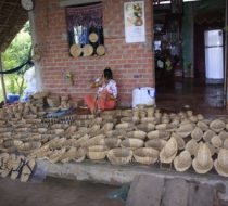 Mekong Delta authentic discovery 2 days with homestay