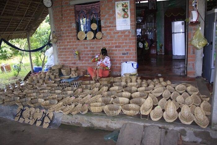Sedge workshop Mekong