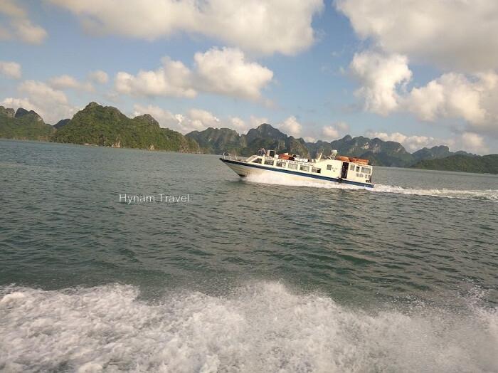 Coto island speed boat